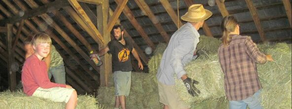 Picture - hay barn and workers
